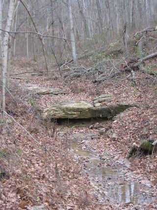 KY hike 036